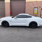MOTORIMPORT IMPORT VOITURE USA MANDATAIRE ETATS UNIS IMPORT FORD MUSTANG GT COUPE 5.07 170x170 - Ford Mustang GT Coupe 2016
