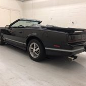Pontiac Firebird Trans Am Coupe13 170x170 - Pontiac Firebird Trans Am Coupe 1986